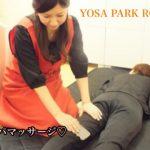 YOSA PARK ROSE