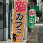 猫カフェ SO-SE-KI